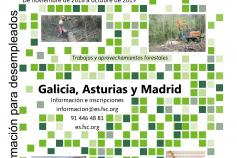 Acciones de proyecto Especialización forestal para el empleo