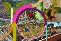 Proyecto Economía Circular Terrae del Programa Empleaverde de la Fundación Biodiversidad