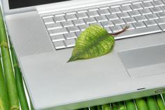 pyme-verde