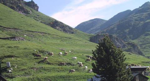 ecotural